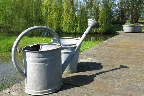 watering-can-392510_1920